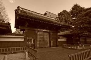 1.toudai-yakyuu