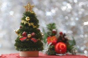 christmas-mini8521