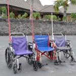 吉岡里帆・映画「マンゴーと赤い車椅子」のwikiや公式情報は?