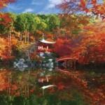 醍醐寺の紅葉の時期は? 混雑予想やアクセス方法は?