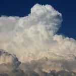 うろこ雲とひつじ雲の違いってなに? いわし雲とは?