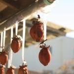 干し柿の作り方や時期は? カビ防止に焼酎や硫黄!?